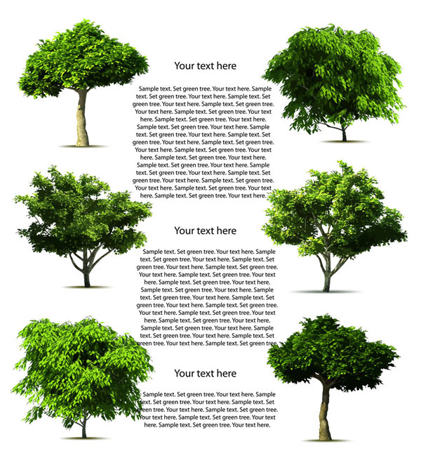 6 Free Realistic Vector Trees