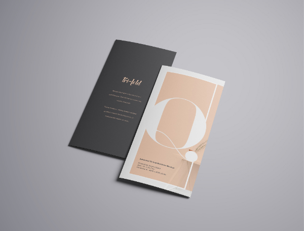 Trifold Brochure Mockup Download