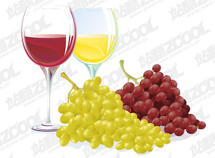 Vector grape and wine material