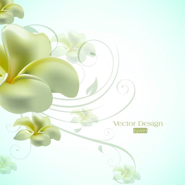 Text elegant lily design background vector material