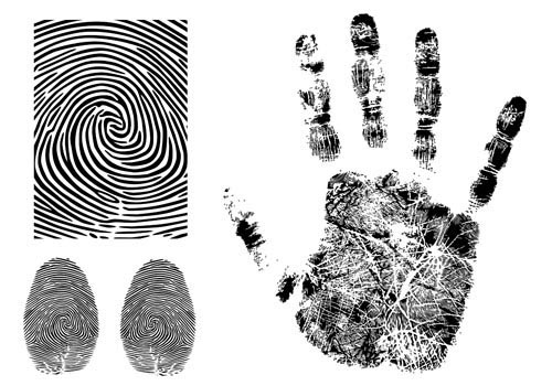 Fingerprint Vector 3 Graphic Hive