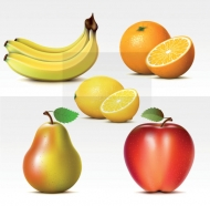 Vector fresh fruit