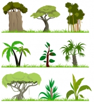 Tree vector material subject