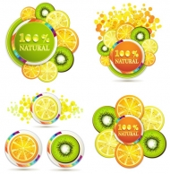 4 Natural Juice Citrus of Lemon & Kiwi (Vector Art)