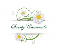 Swirly Camomile Vector Graphic