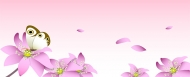 Pink flowers and butterfly Vector material