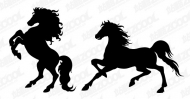 Horse Silhouette Vector material -2