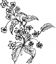 Vector line drawing of plant material