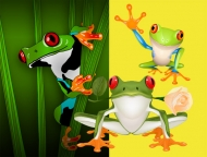 3 cute frog vector material