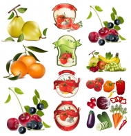 Fruit and vegetable theme vector material