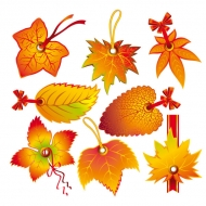 Beautiful leaves Vector 2 tab