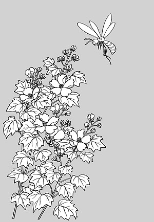 Japanese line drawing of plant flowers vector material 15