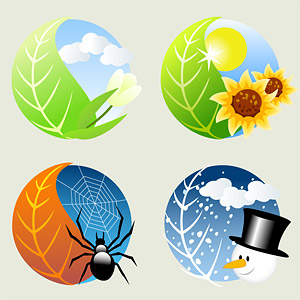 Four seasons icon vector material