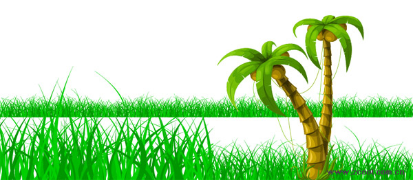 Coconut Trees Grass Vector Graphic| Graphic Hive