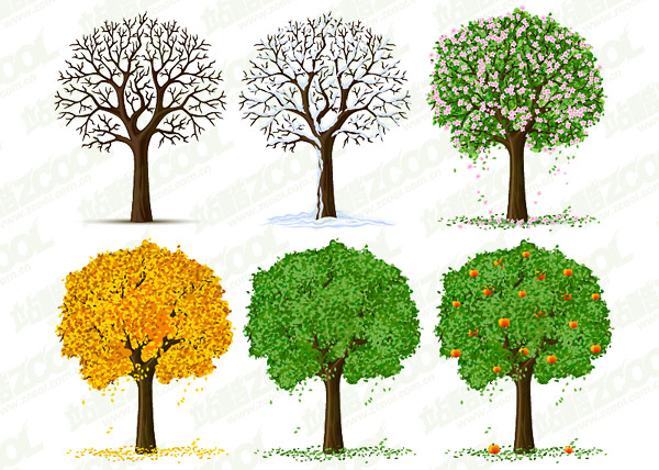 Four Seasons Trees Vector material