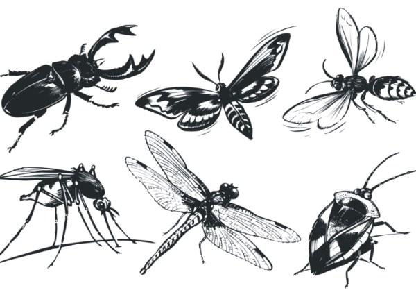 Single insect vector material
