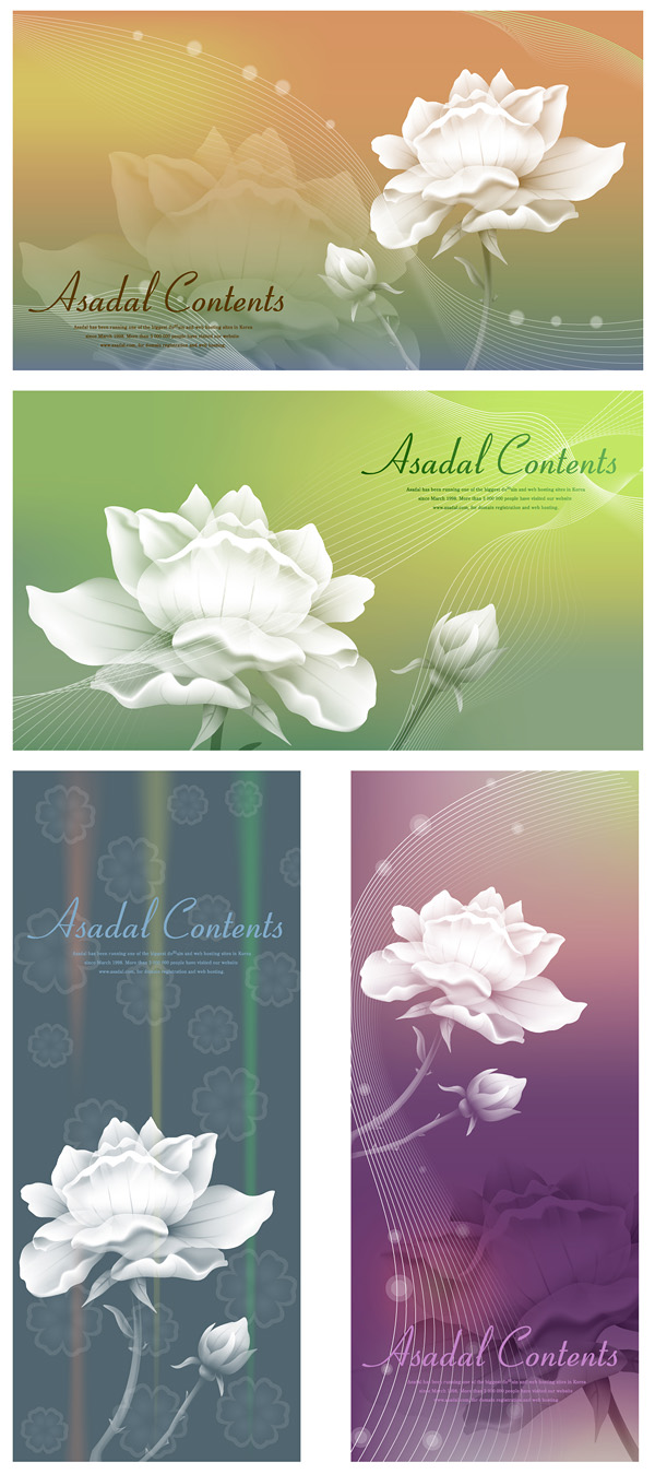Vector background of white roses with dream material