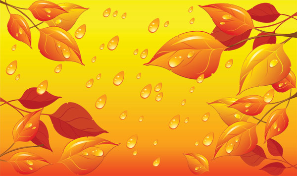 Leaves water drops vector material