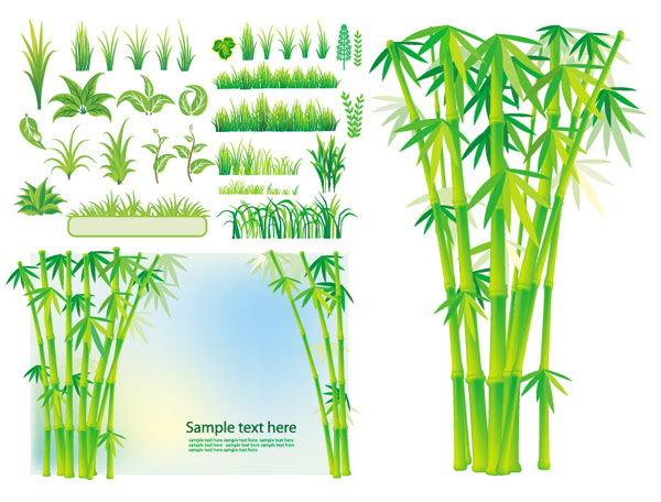 Bamboo grass plant vector material
