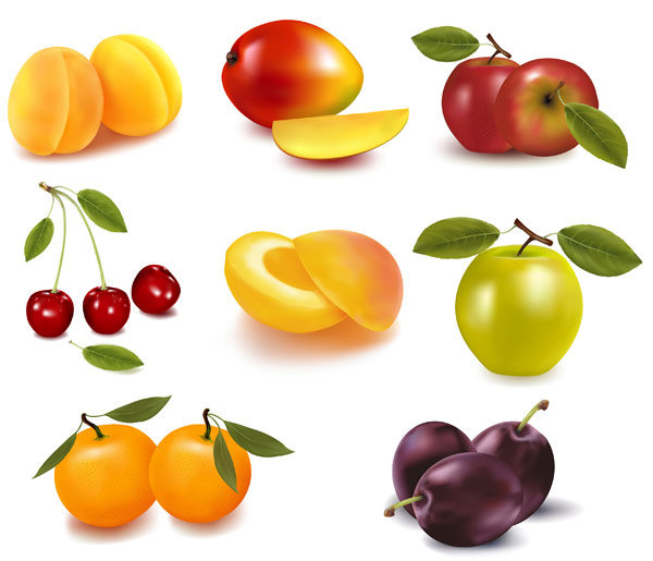 eight kinds of fruits and vector graphic
