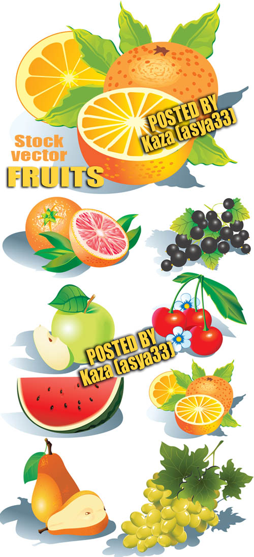 Fruit vector material
