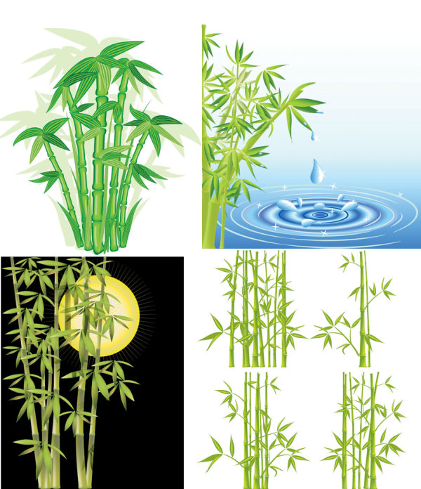 Bamboo vector material